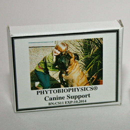 Canine Support Box